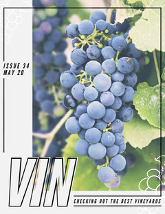 vin magazine cover Frame