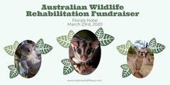 Green with Oval Leaf Frames Australia Wildlife Fund Eventbrite banner Fundraiser