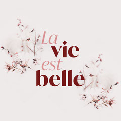 la vie est belle Instagram square Positive Thought