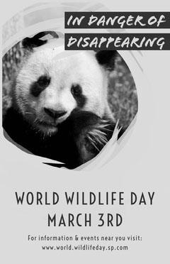 world wildlife day awareness panda poster Awareness