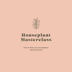houseplant master class instagram Plants