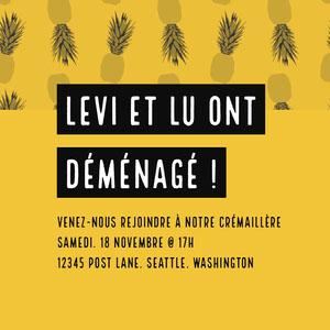 LEVI et LU ONT DÉMÉNAGÉ ! E-mail d'invitation