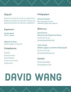David Wang CV professionnel