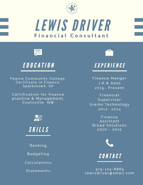 Blue and White Infographic Resume CV professionnel