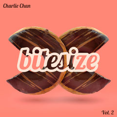 Orange Bitesize Donut Album Cover Donut