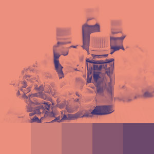 Color Palettes | Duotone & Monochromatic 7 101 Brilliant Color Combos