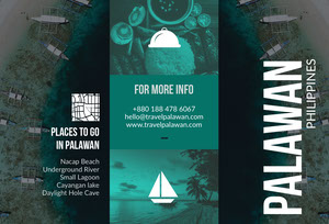 Black White and Green Palawan Brochure Brochure