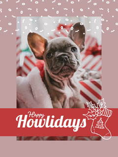 Pink and Red, Bright Toned Christmas Card  Pets