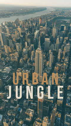 View Of Urban Jungle Phone Wallpaper Background