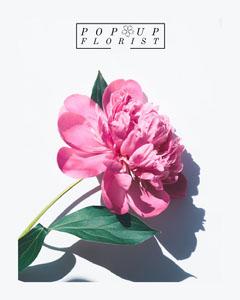 Pop up florist Instagram portrait  Flowers
