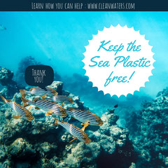 Blue Underwater Plastic free sea Instagram square Ocean