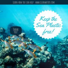 Blue Underwater Plastic free sea Instagram square Water