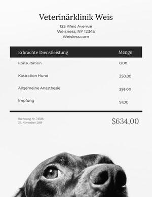 veterinarian invoice  Rechnung