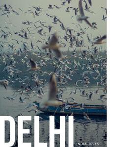 Cold Toned Bird Flock Over Lake Delhi Instagram Story Boats