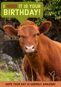 I herd it is your birthday! Birthday