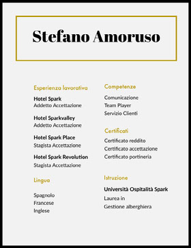 Stefano Amoruso   Curriculum professionale