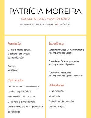 Patrícia Moreira Currículo