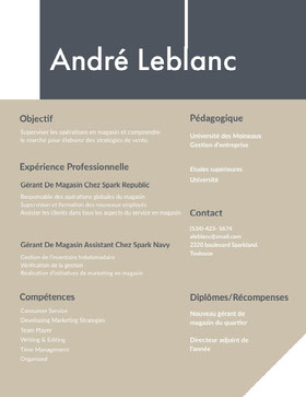 André Leblanc CV professionnel
