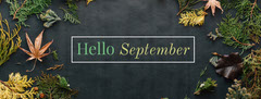 Autumn September Facebook Profile Cover with Plants Autumn