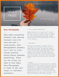 Winter Photography Newsletter Graphic Newsletter Examples