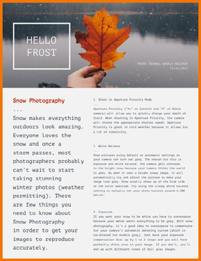 Winter Photography Newsletter Graphic Newsletter