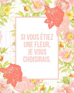 Si vous étiez une fleur, je vous choisirais. Texte sur les photos