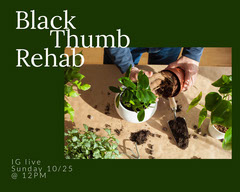 green plant workshop social advertisement Workshop