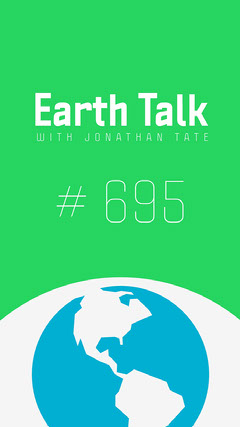 Green and Blue Earth Talk Podcast Instagram Story Earth