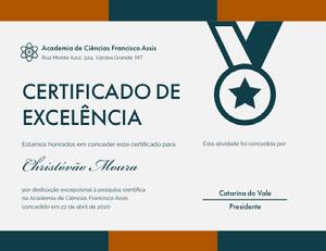 CERTIFICADO DE <BR>EXCELÊNCIA  Diploma