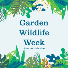 Garden Wildlife Week Insta Square Garden