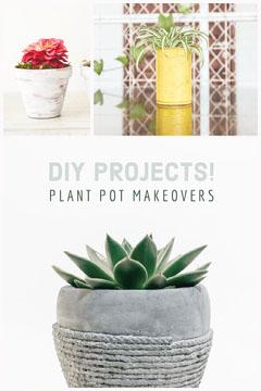 DIY Plant Pot Pinterest Graphic Plants