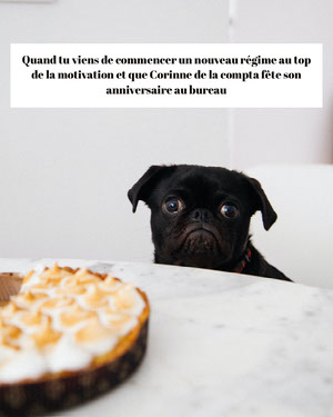 Sad Pug New Diet Meme  Affiche de motivation