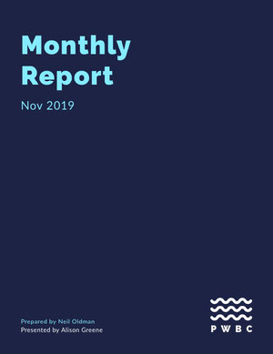 Dark Blue Simple Minimalist Monthly Business Report Rapporto