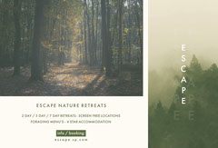 White and Green Escape Retreat Brochure Vacation