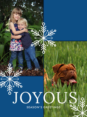 Blue, Green and White Family Christmas Card  Family Collage