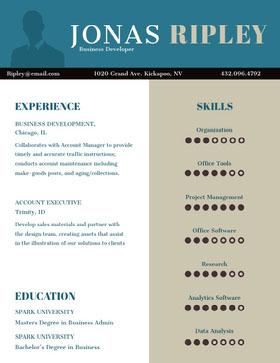 Professional Business Developer Resume Resume