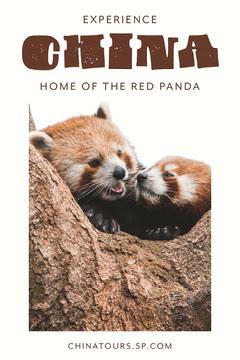 China red panda tours Pinterest  Animal