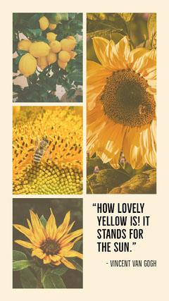 sunflower quote igstory Sun