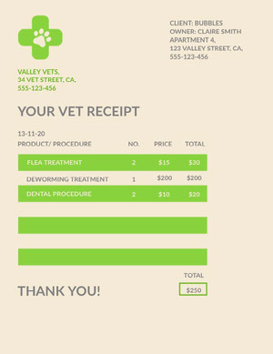 Green and Beige, Light Toned Vet Service Receipt  Todistus