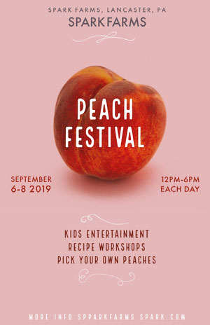 Pink and Orange Peach Festival Poster Pink Flyers