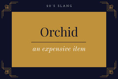 NavyBlue and Orange Orchid 1920s Slang Flashcard  Jazz