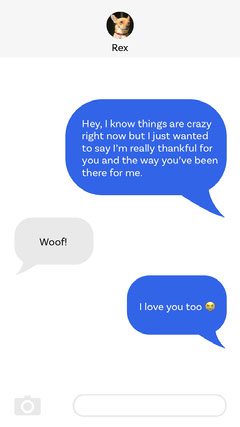 Funny Sweet Text Message Conversation with Dog Pets