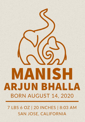 Brown Indian Birth Announcement Card with Elephants Annonce