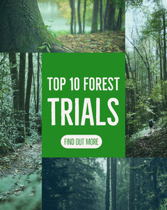 Top 10 Forest Trials Forest