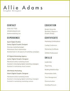 Graphic Designer Resume Designer