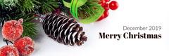 Merry Christmas  Seasonal
