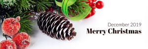 White With Decorations Merry Christmas Banner Banneri
