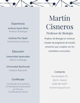 Martín<BR>Cisneros Currículum profesional