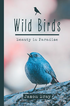 Black Blue Wild Birds Nature Book Cover  Nature