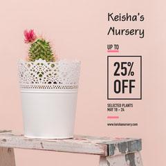 plant sale instagram  Cactus